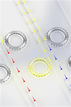 Artist visualization of slow light, fast light, and one-way light blocking using BSIT in a series of silica microresonators (slow/red, fast/blue; central yellow shows blocking effect).