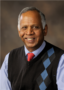 Sivapalan received the 2017 Alfred Wegener Medal, one of three equally top-ranked medals awarded by European Geosciences Union. (Photo courtesy of the Department of Geography & GIScience.)