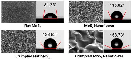 Images of atomically thin MoS2 with micro- and nano-scale roughnesses and their corresponding water contact angles.