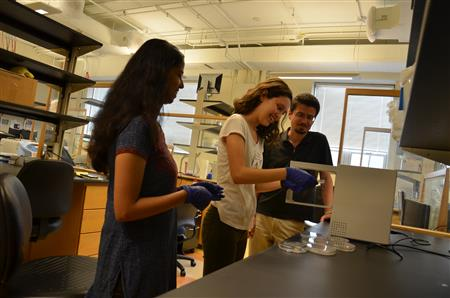 Grad student mentor Roshni Bano, Young Scholar Clara Duarte, and Professor Yann Chemla (left to right) watch as Clara performs a procedure in   Chemla's biological physics lab.