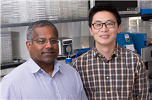 Biochemistry professor Satish Nair, left, postdoctoral researcher Shi-Hui Dong and their colleagues discovered a mechanism by which bacteria signal one another to become more virulent. The researchers hope to manipulate this pathway to treat disease.
