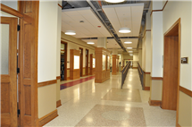 New classrooms, labs, displays, hallways, and other spaces were part of an extensive renovation of Natural History Building.