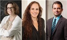 From left: Amy Ando, professor of environmental and natural resource economics, Hedda Meadan-Kaplansky, professor of special education, and Saurabh Sinha, professor of computer science, have been named University Scholars.