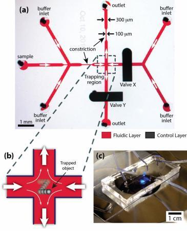 The 2-D microfluidic trap. a) Optical micrograph of a microfluidic manipulation device. Single particles are confined at a predetermined location within the junction of two perpendicular microchannels (trapping region). Two on-chip membrane valves (black) positioned above one inlet channel and one outlet channel are used as metering valves to control the relative flow rates through the opposing channels (red), thereby manipulating and trapping particles at the microchannel junction. b) Schematic of 2-D particle trapping. Two opposing laminar streams meet at the intersection of two perpendicular microchannels, creating a well-defined flow field containing a stagnation point where an object is trapped. c) The microfluidic manipulation device consists of a glass coverslip and a PDMS slab containing the microchannels and valves. Reprinted with permission 2013 American Chemical Society.