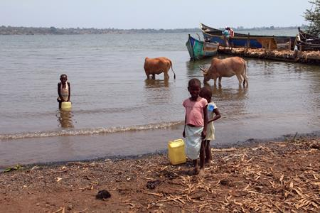 In Kenya, children draw water from Lake Victoria, where livestock also drink. This photo was taken during a class trip to Africa, led by CEE Professor Benito Marinas.