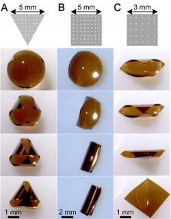 Spontaneously folding of (A) triangular and (B, C) square silicon sheets (1.25 ¼m thick) with a water droplet.