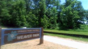 The results of the study will help cities make smart decisions regarding green space, which might include a stormwater wetland, like the one at Urbana's Weaver Park.