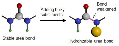 Hindered urea bond-containing polymeric materials (PHUs) are cheap polymers that can be designed to degrade over a specified time period. Image: Catherine Yao.