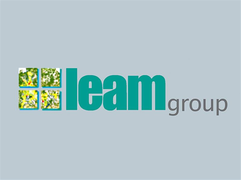 LEAMgroup