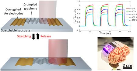 Stretchable photodetector with enhanced, strain-tunable photoresponsivity was created by engineering the 2D graphene material into 3D structures, increasing the graphene�s areal density.