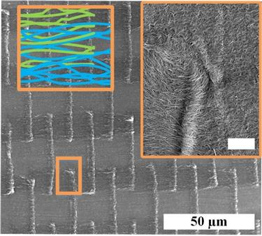 Scanning Electron Microscope Images of architectured carbon nanotube (CNT) textile made at Illinois. Colored schematic shows the architecture of self-weaved CNTs, and the inset shows a high resolution SEM of the inter-diffusion of CNT among the different patches due to capillary splicing.
