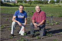 Stephen Long, left, and Donald Ort direct the Realizing Increased Photosynthetic Efficiency (RIPE) project that has received a $45 million reinvestment. (Photo courtesy of Carl R. Woese Institute for Genomic Biology.)