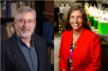 Douglas Simpson and Carla Cáceres have been elected 2017 Fellows of the American Association for the Advancement of Science.
