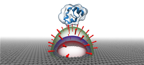 Representation of a nanopore in an atom-thick graphene membrane focusing electric field and compressing water inside the pore. Computer simulations revealed that the compressed water blocks the passage of biomolecules through the pore, without the presence of physical gates. Credit: A Aksimentiev and J. Wilson, University of Illinois at Urbana-Champaign