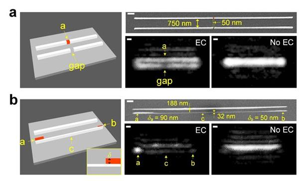 Experimental visualization of individual nanowires and their and fabrication imperfections. The new and conventional optical microscope methods are labeled (EC) and (No EC), respectively.  Creative Commons Attribution 4.0 International