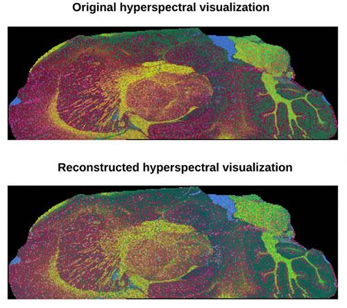 Top, hyperspectral visualization with data from a standard 9-hour experiment compared with hyperspectral visualization with data from a proposed 1-hour experiment.