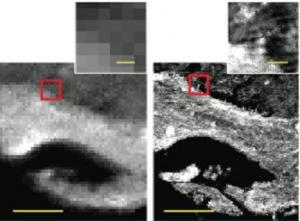 IRENI-generated images (right) are 100 times less-pixelated than in those from conventional infrared imaging (left).