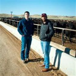 Mitch Minarick and Sid Verma have set a goal to broker 4,000 head of cattle by May 2015.