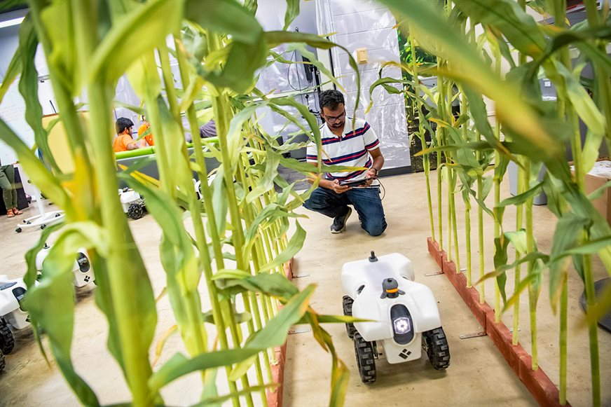 A student operates the TerraSentia robot in Chowdhary's campus laboratory.  (Photo credit: Matthew Lester Photography, LLC. and Illinois News Bureau)