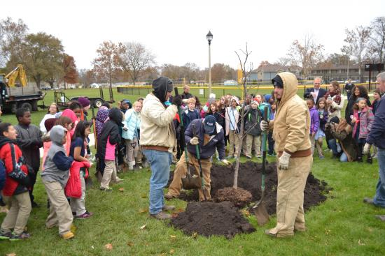 The Champaign Park District and the students of BTW School plant a Buckeye tree in Douglass Park.