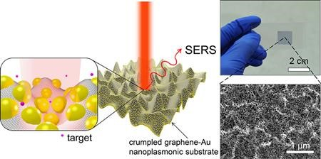 Schematic illustration of SERS enhancement from a crumpled graphene−Au NPs hybrid structure. Raman spectrum is enhanced the most when the target molecule is situated at the center of Au NPs in valley of crumpled graphene as depicted in inset.