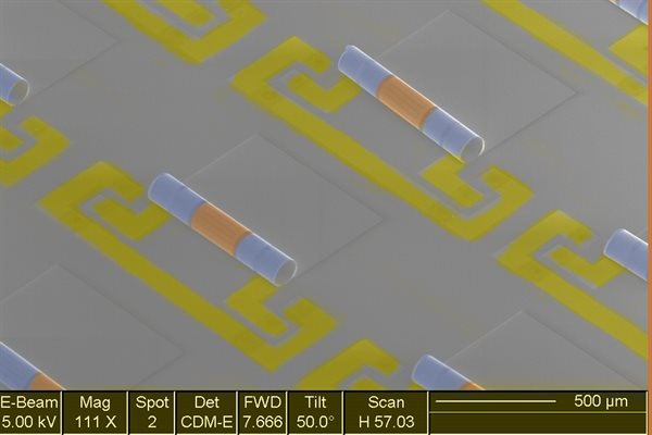 Electron microscope image of an array of new chip components that integrate the inductors, blue, and capacitors, yellow, needed to make the electronic signal filters in phones and other wireless devices.  Image courtesy Xiuling Li