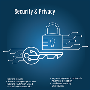 Security & Privacy image