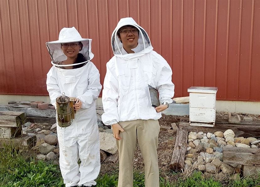 Xiaolin Wu (left) and Jimmy He suit up to install WaggleNet at Schmitz's own beehive.  Photo by Chris Schmitz