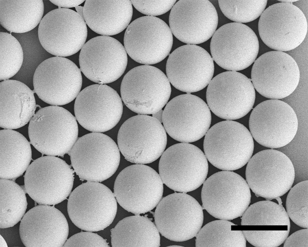 The method developed allows them to make tiny, uniform capsules and control the size, allowing for a capsule-within-a-capsule technique. Image courtesy of Prof. Kim.
